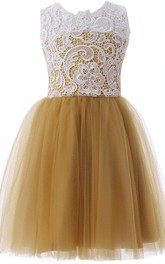 Sleeveless A-line Dress With Tulle and Lace Bodice